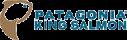 patagonia-king-salmon-190x60