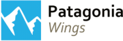 patagonia wings